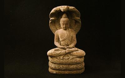 Bouddhisme et psychothérapie
